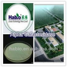 Alpha-galacotosidase, food additive