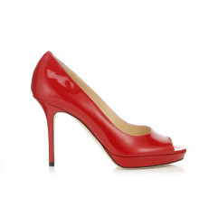 Pop Fashion High Heeled Pointy Toe Ladies Shoes (Y 94)