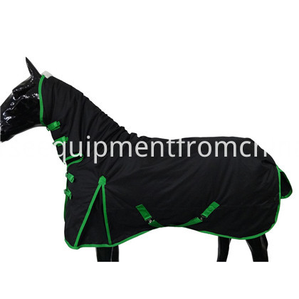 combo horse rug (2)