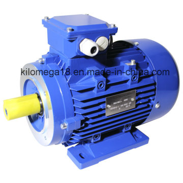 Three Phase Cast Iron Electric Motor with Ce Certificate 7.5kw