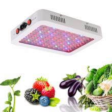 LED wachsen Licht Doppelschalter 600W