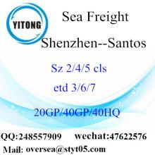 Shenzhen cảng biển vận chuyển hàng hóa vận chuyển đến Santos