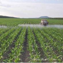 Amino Acid Liquid of Organic Fertilizer