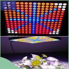 45W luz de panel LED Growlight