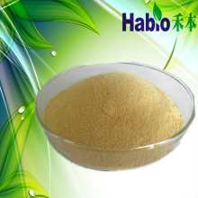 Nutrient Bread Improver Lipase for Bakery