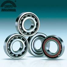 Non-Standard Bearing of Angular Contact Ball Bearing (7024/dB)