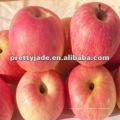 Chinois fuji apple