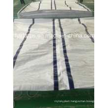 LDPE Coated PE Tarpaulin Cover, LDPE Woven Fabric Plastic Tarpaulin, China PE Tarp Sheet, Poly Tarp Cover