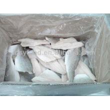 frozen lateolabrax japonicus fillet seabass