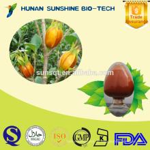 Hochwertiges Gardenia-Extraktpulver 10% -98% Geniposid CAS: 24512-62-7
