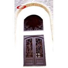 Puerta de hierro revestida de diseño