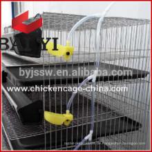 Schicht Wachtelkäfig für Geflügel Farm Equipment