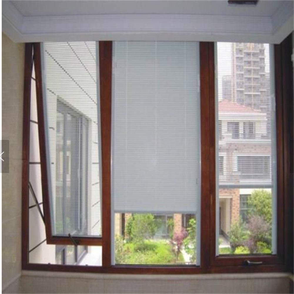 Awing Window with Built-in Blind
