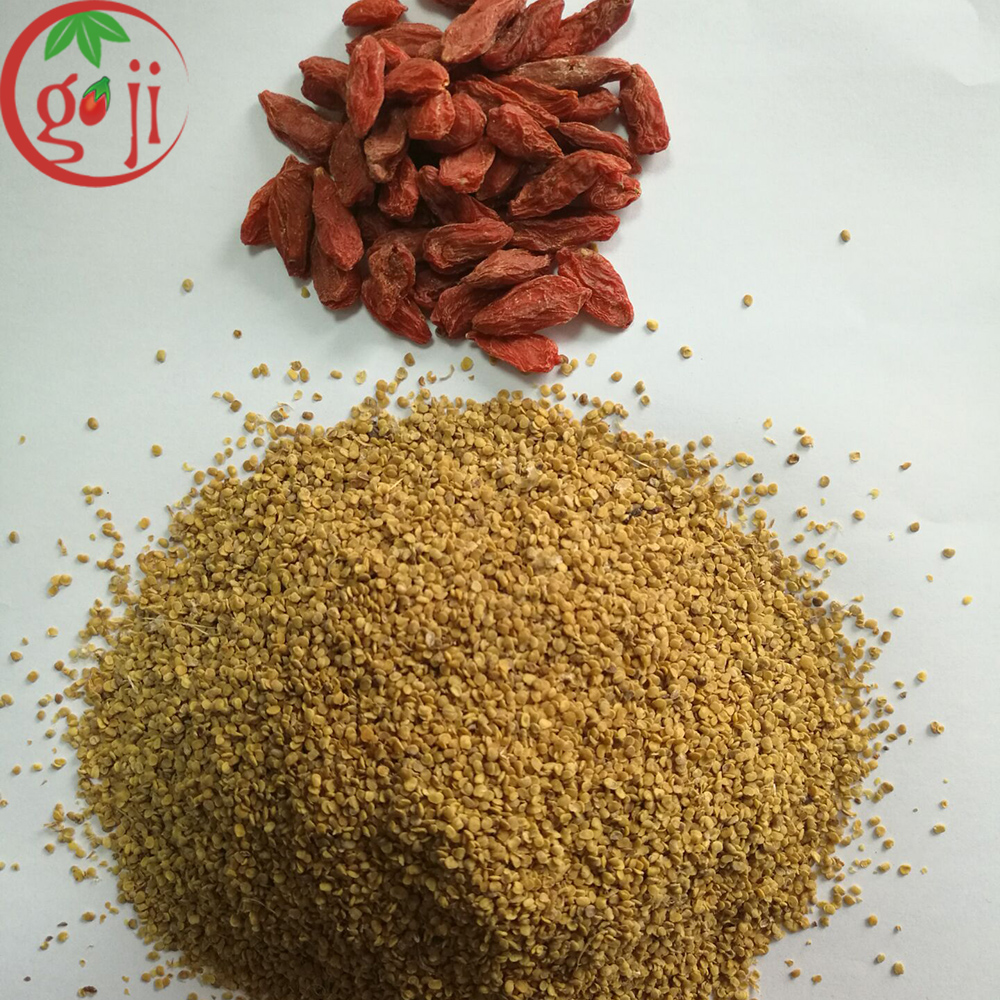 NQ-01 GOJI BERRY SEED FOR PLANT