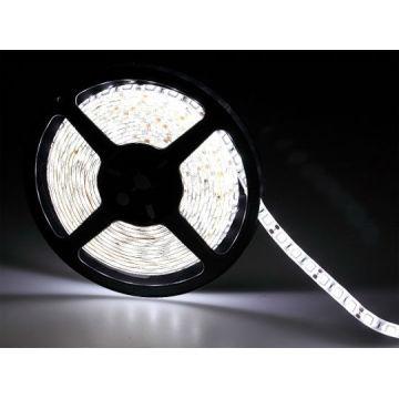 RGB светодиодные полосы света 12V теплый белый свет