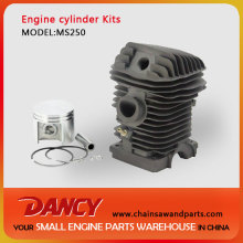 MS250 replacement cylinder kits