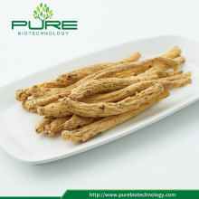 Herbal Medicine Dang Shen Dried Radix Codonopsis