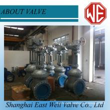 Gate valves 800#