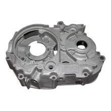Manufacturing Companies for Steel Die Casting Aluminium Pressure Casting for Auto Parts supply to British Indian Ocean Territory Factories