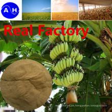 Real Factory Amino Acids Vegetable Source Libre de Aminoácidos Chloridion