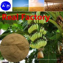 Fonte vegetal dos ácidos aminados reais da fábrica livre dos aminoácidos de Chloridion