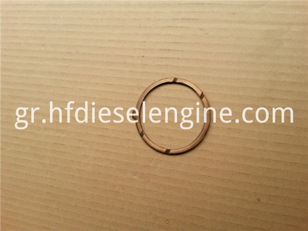 F1L511 thrust washer 2