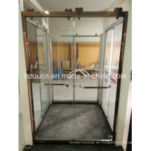 Dusch-Glastür mit großer Edelstahlrolle (SD-502)