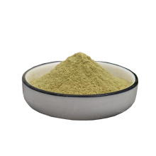 Factory supply 100% natural organic dry celery powder with great price