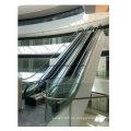 Attraktive Entwurfs-Innenwerbungstreppe für Untergrundbahn