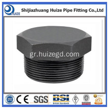CL3000 Thr A105-N Hex Plug