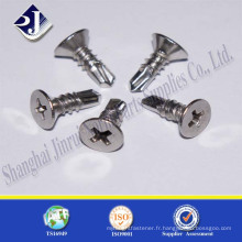 Fabriqué en Chine Summer Hot Sale Countersunk Screw