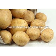 Китайский свежий картофель