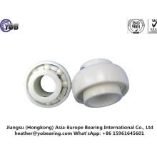 6006 Ceramic Ball Bearing