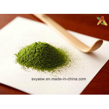Natural Manufacturer Supply Matcha Green Tea Powder