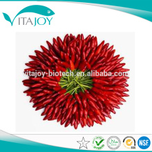 100% extracto de pimentón natural 10% Capsaicina en el suministro a granel con buen precio