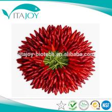 100% de extracto de paprika natural 10% de capsaicina em fornecimento a granel com bom preço