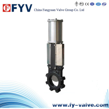 API Lug Knife Gate Valve (Pneumatic)