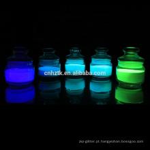 Brilho no escuro pó brilho no escuro pigmento para escape rota sinais e pintura