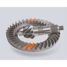 Stainless Steel Bevel Gear with Transmission