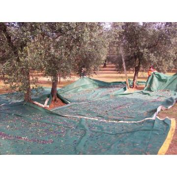 90gsm Olive Collection Net & Fruit Reti