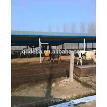 Cepillo de vaca / Cepillo de dientes de vaca / Equipo de granja de ganado