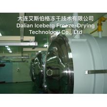 Blaubeer-Gefriertrocknungsmaschine