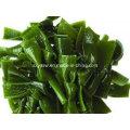 Kelp Extract 10% 40% Natural Fucoxanthin