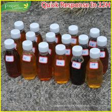 Miel de fruta