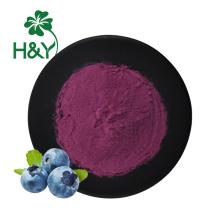High Quality wild freeze dried blueberry juice powder