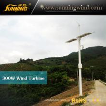 Generador de turbina del viento de imán permanente de 300W híbrido sistema (MINI 3)