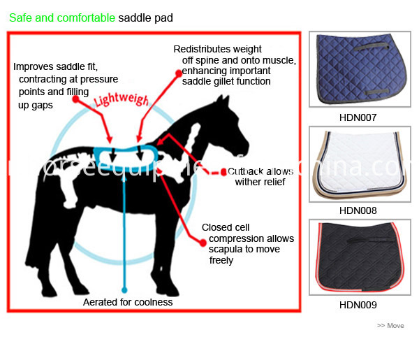 Safe and comfortable saddle pad