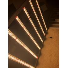 Dimmable LED élèvent des lumières à spectre complet Samsung LM301B