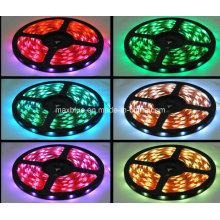 IP65 Waterproof 30LEDs/M RGB LED Strip Light