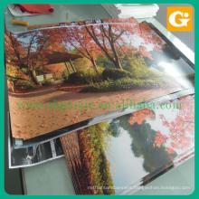 Poster Paper Poster Printing